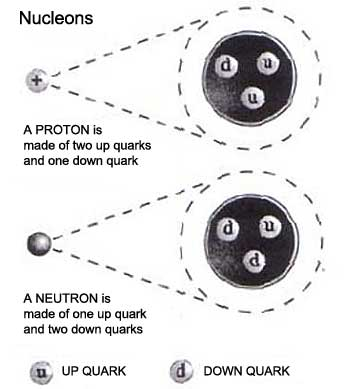 Quark composition of a Proton and a Neutron